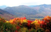NSF CNH scientists will look at the ecosystem resilience of northern forests in New England.